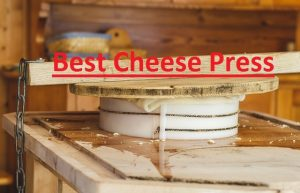 Best Cheese Presses